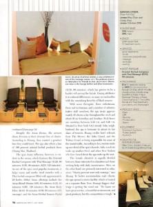 Design X Furniture featured in American Spa Magazine